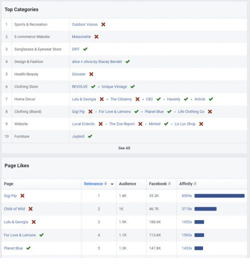 Facebook ads audience insights report